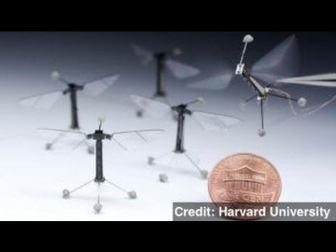 Harvard Engineers Build Flying Robot 'Bee'
