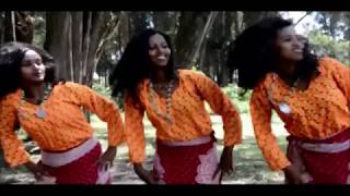 Dawit Kebede - Weelliissaa - New Ethiopian Music 2017(Official Video)