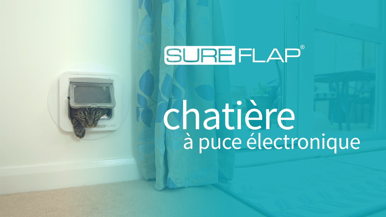 publicit de la chati re puce lectronique sureflap youtube. Black Bedroom Furniture Sets. Home Design Ideas