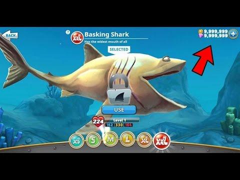 игры hungry shark evolution с бесконечными деньгами