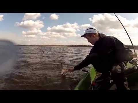 Pike Twitching - Latvia ( GoPro HD Hero 2)