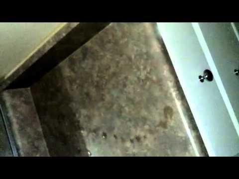 A blinking eye ball in my tub!! Scientology and illuminati crimes   YouTube