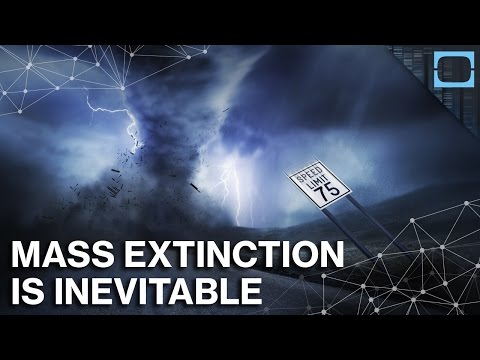 Why The Next Mass Extinction May Already Be Here