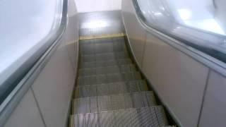 Otis Escalators @ Macys-Green Acres Mall