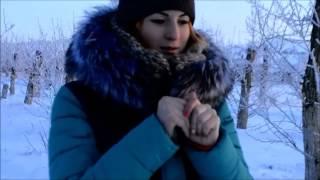 Мисс школы 2016.Гусиноозёрск.
