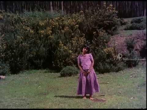 Sankar Guru - Chinna Chinna Poovey song