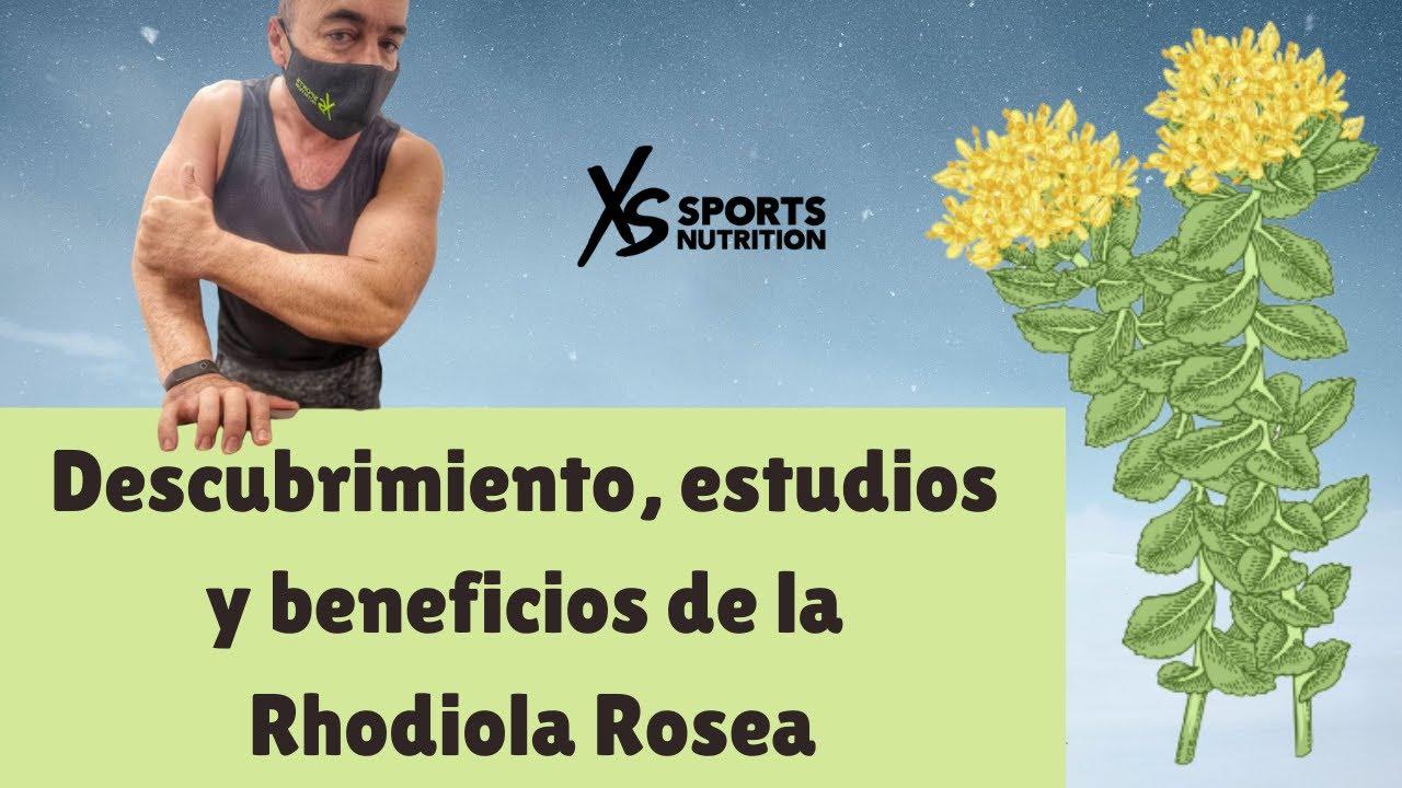 rhodiola rosea vă ajută să pierdeți în greutate)