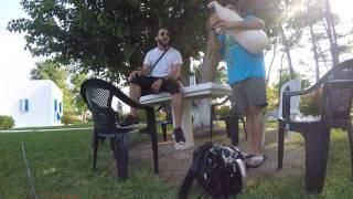 ΒΑΣΙΛΚΟΥΔΑ/Στου Τουκμακι Μεταξαδεσ/Ο Γιαννησ Δημαρχοσ