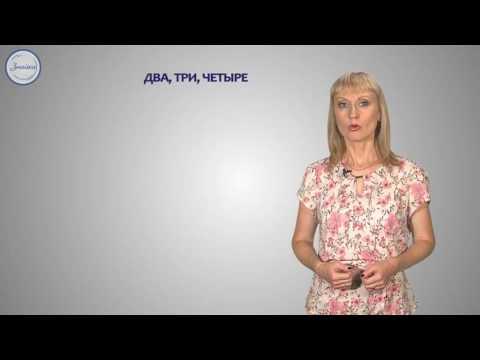 Русский язык Целые числительные