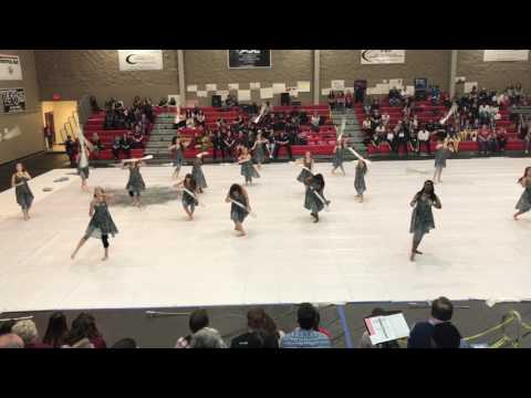 Daphne High School Winterguard Saraland Competition 2017