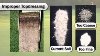 Diagnosing Green Soil Profiles