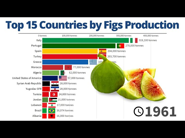 Top 15 Countries by Figs Production | 1961/2019