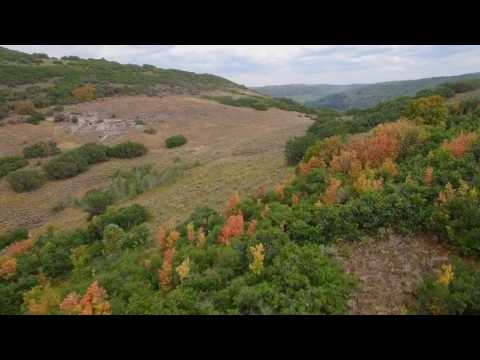 Platinum Luxury Auctions: Wolf Creek Ranch | Residential Lots | Heber City, Utah