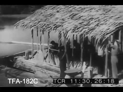 Journey of discovery Borneo | Film history documentary