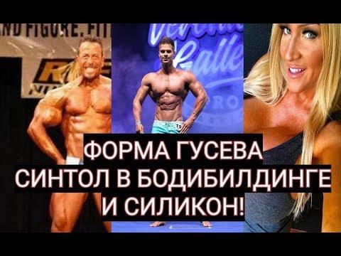 ДЕНИС ГУСЕВ И ЕГО ПОДГОТОВКА. СИНТОЛ В ББ!