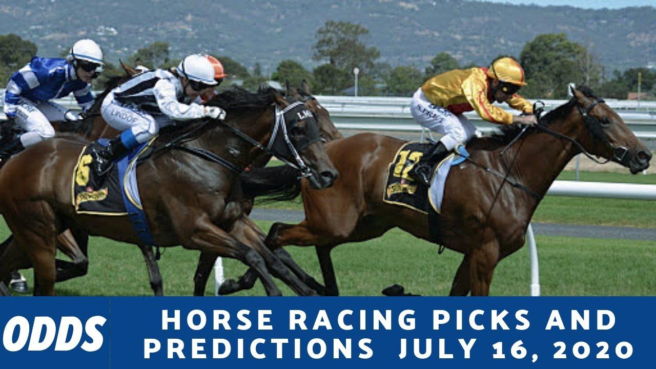 Live betting horse racing plan catamaran de sport betting