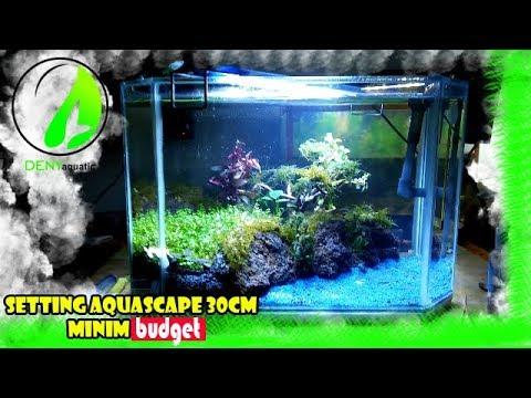 Setting Aquascape Tank 30 40cm Minim Budget Youtube