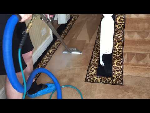 Cleaning A Custom Made African Patterned Carpet - CSB Carpet Cleaning