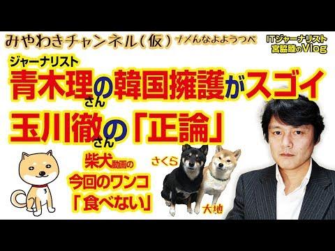 青木理氏、対北「日本だけ蚊帳の外感」「日本は地域の平和に向けた独自構想が無い。歴史認識問題で未だに韓国と…」