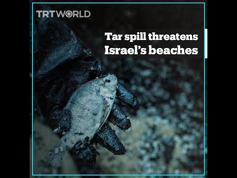 Israel's beaches polluted with huge offshore tar spill