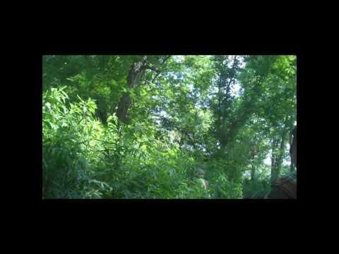 Billie Creek: Battle for Caen (Part 1)