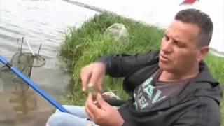 Советы бывалых рыбаков. Насадки на карася