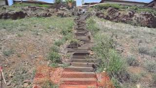 Calcaneus Fracture - Maui Steps