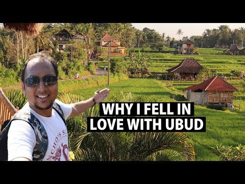 Travelling Java to Bali by bus, ferry   Exploring UBUD   Indonesia Ep 10