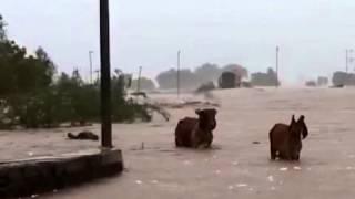 Flood in Saurashtra part of Gujarat