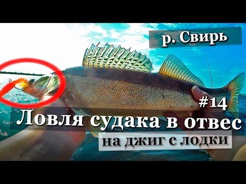 запрет на ловлю спиннингом в ленинградской