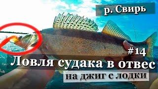 Рыбалка и Ловля судака в отвес  на джиг в Ленинградской области 2016