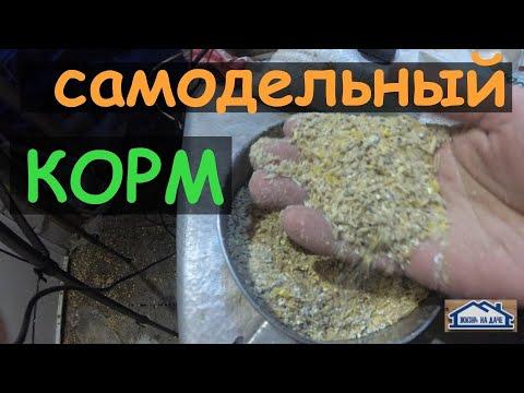Как самому сделать корм для кур