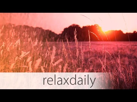 Light Background Music - piano, uplifting, relax - N°025 (4K)