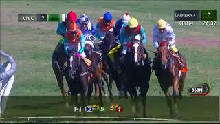 Vidéo de la course PMU PREMIO MISS THERESE