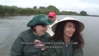 Gambar cover Prevod na mađarski jezik  Veliki backi kanal   Da sam riba a da imam krila