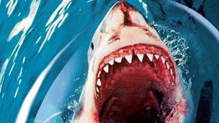 Акулы людоеды- наподение на людей - документальный фильм.