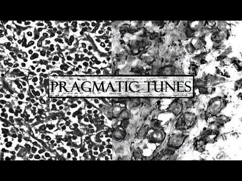Pragmatic Tunes - Lukiye & Chai (ARNOB BLEND COVER)