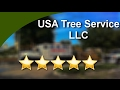 USA Tree Service llc Weeki Wachee Impressive 5 Star Review by tony k.