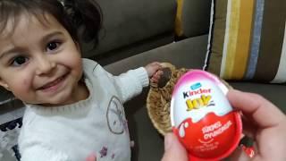 Ayşe Ebrar ile sürpriz yumurta bulmaca oynuyoruz | for kids video