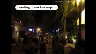 Playa del Carmen Nightlife - Bars, Night Clubs, Party, Playacrawl