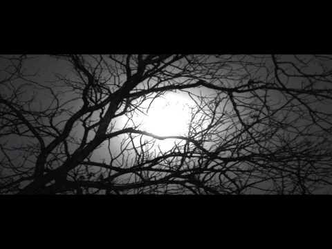 Eliza Gilkyson - Sleeper