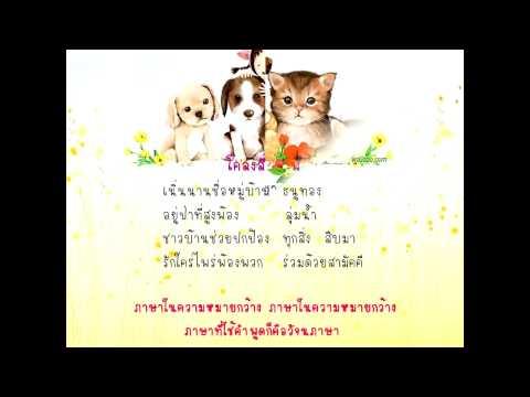 เพลงไทย กบร้องท้องปวด