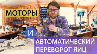 ШКОЛА ИНКУБАТОРОСТРОЕНИЯ №7 (моторы и автоматический переворот яиц для инкубатора своими руками)