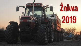 Żniwa 2019 -Fortschritt E514 ✔ [2019]☆ MłodziTV