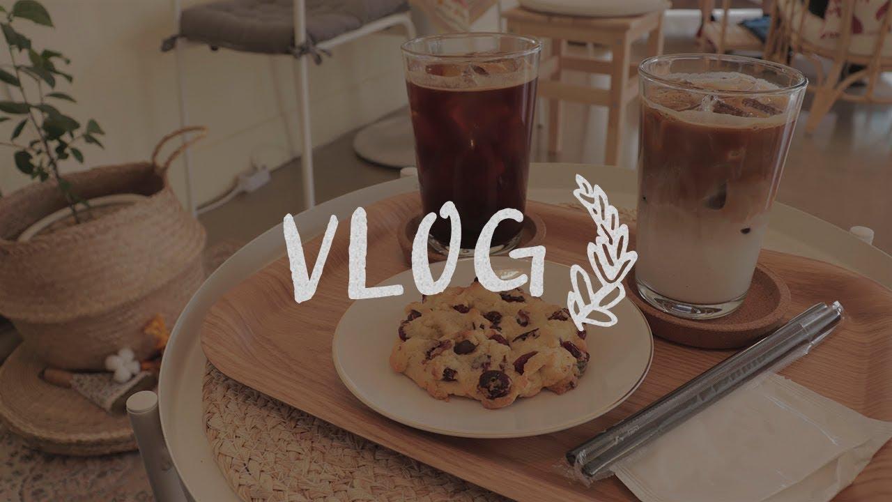 [브이로그] 평범한 일상 vlog, 엽기떡볶이, 고양 이케아 환불, 카페, 강아지와 산책