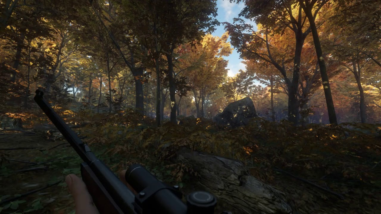 The Hunter Call of the Wild: Beautiful Realistic Graphics