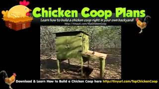 Automatic Door Chicken Coop (my Chicken Coop)