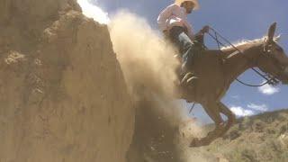 EXTREME MULE RIDING- Desert Mountain Edition