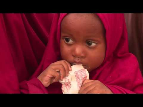 Nigeria - Insufficient aid for the displaced in Maiduguri