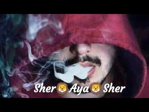 Full Screen || Attitude Boys || WhatsApp Status || Sher Aaya Song || Divine Rap